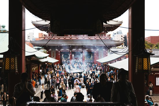 Tokyo Day Tour: Meiji Shrine, Asakusa...