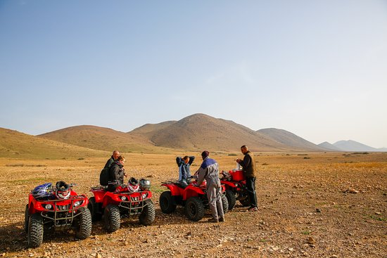 Camel and Quad Biking Tour from...