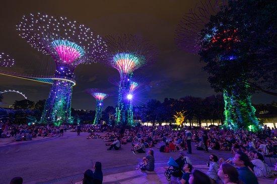 Singapore Night Tour: Gardens by the...