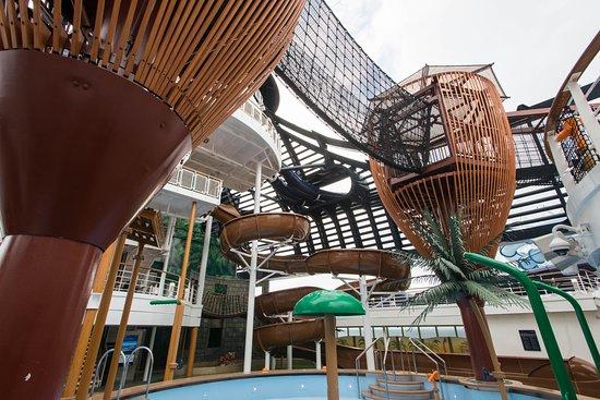 Forest Aquaventure Park on MSC Seaside