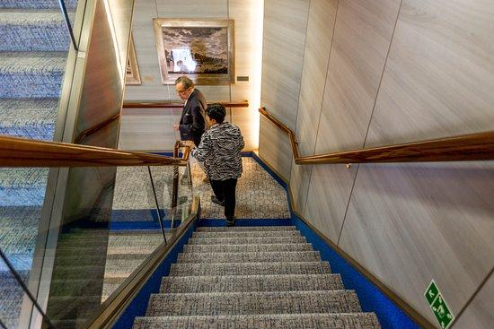 Stairs on Zuiderdam