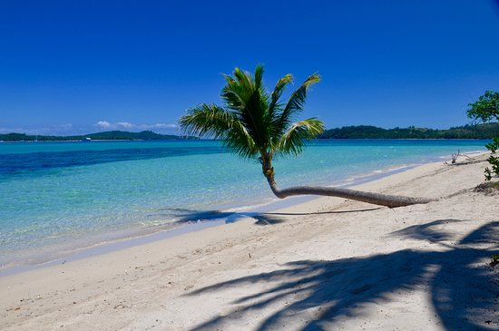 Beach - Picture of Coconut Beach Resort, Tavewa Island - Tripadvisor