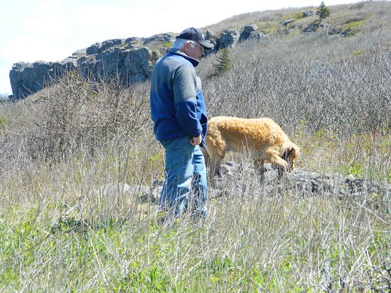 Freeport, Kanada: A wonderful walk for your four legged friends. The dog is checking out a pile of rocks left behind by early settlers who lived along this rugged shoreline.