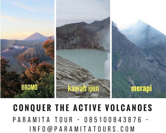 Paramita Tours & Travel