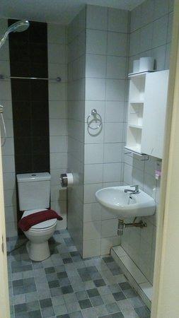 バスタブなし。シャワーはお湯でます。シャワーのホースは短く、スペースが狭い。