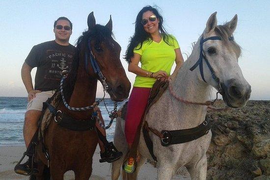 Promenade à cheval privée et tour de...
