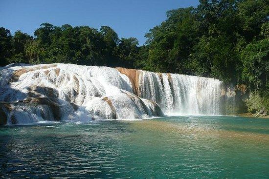 帕伦克阿瓜阿祖尔和Misol-Ha瀑布半日游
