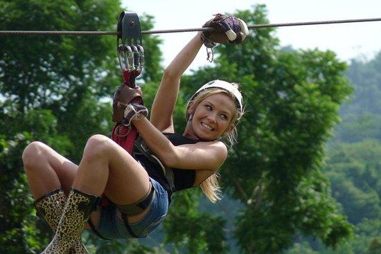 Halv-dagers Zipline Ride på Koh Samui