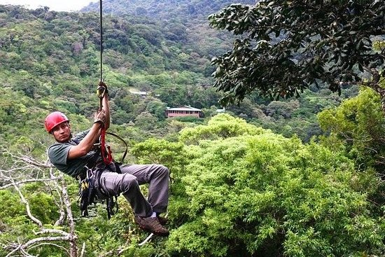 The Original Canopy Tour Monteverde