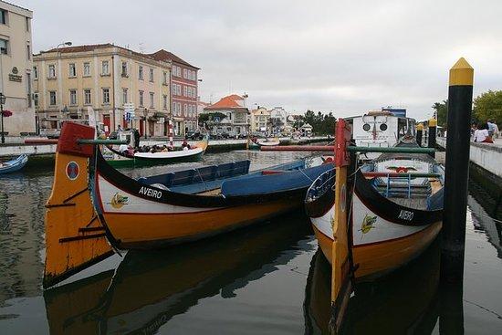 Croisière touristique à Aveiro avec...