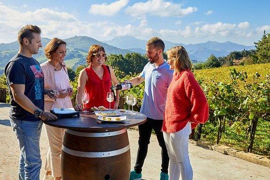 Getaria und Zarautz Txakoli Wine Tour...
