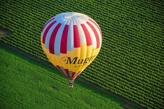 Heißluftballonflug über die Weinberge...