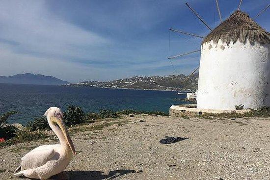 Tour privado: Isla de Mykonos en...