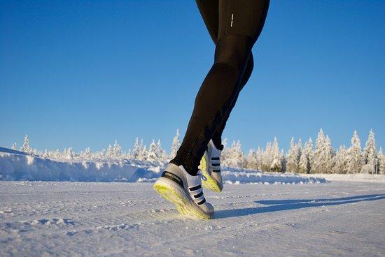Rovaniemi Running Tours