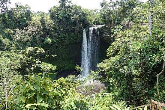 MACASから車でTAISHA方面へ2時間。MACUMAの近くに60mの高さを誇るSAMIKIM滝が見えてきます。 森林の中にぽっかりと浮かぶ滝と滝壺はとても壮大でした。