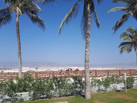 Oman: countryside