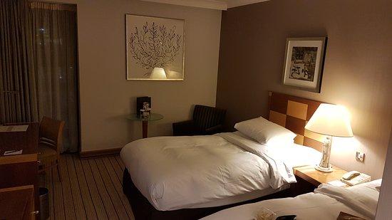 Hotel Hilton London Gatwick Airport: Twin room