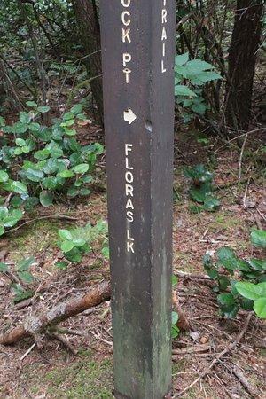 Blacklock Point Trail or Floras