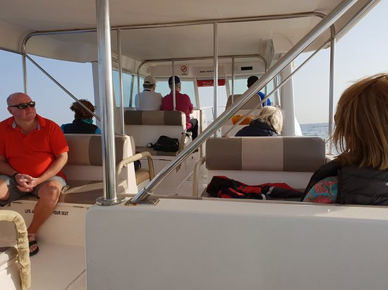 Dolphin Cruise from Muscat: Onze boot.  De schipper was erg goed. Anticipeerde heel mooi op aankomende golven.