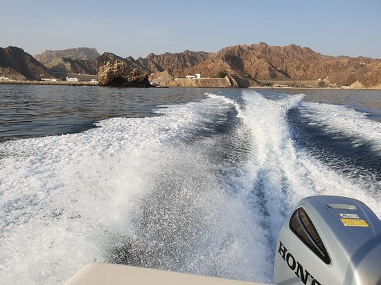 Dolphin Cruise from Muscat: .