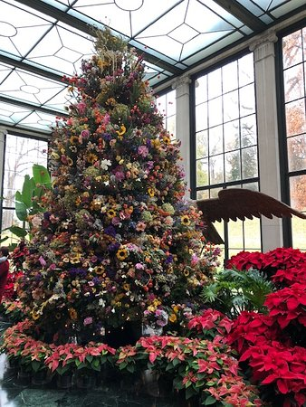 Winterthur, DE: The dried flower Christmas Tree