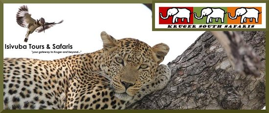 Isivuba Tours & Safaris