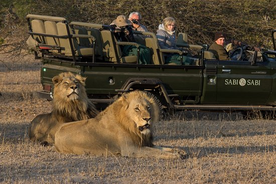 Goma, Демократическая Республика Конго: Akagera national park  the best of big five experience