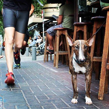 Running in Florentin st.