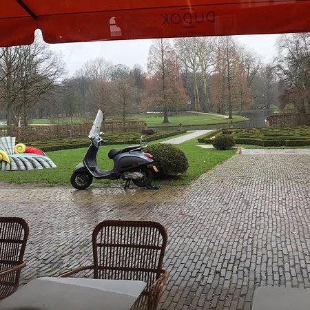Dutch Delight in Het Park Rotterdam