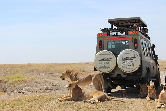 Kilidove Tours and Safaris