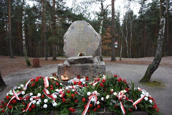 Głaz Piłsudskiego