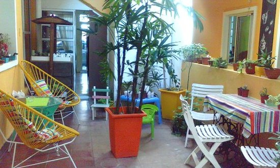 Necochea, Argentina: JARDIN EN EL HOTEL D YD