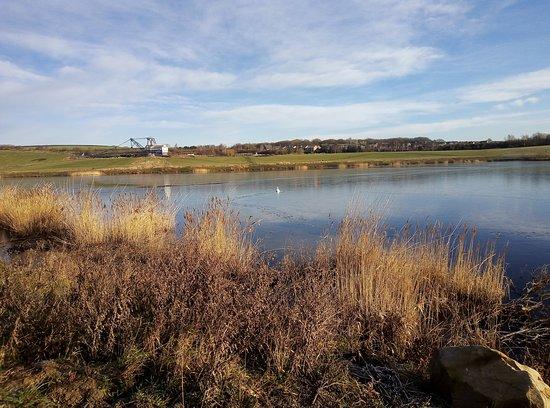 RSPB St Aidan's nature park