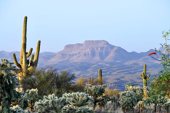 A view toward the Galiuro Mountains as seen from Redington Road just south of San Manuel, Arizona.