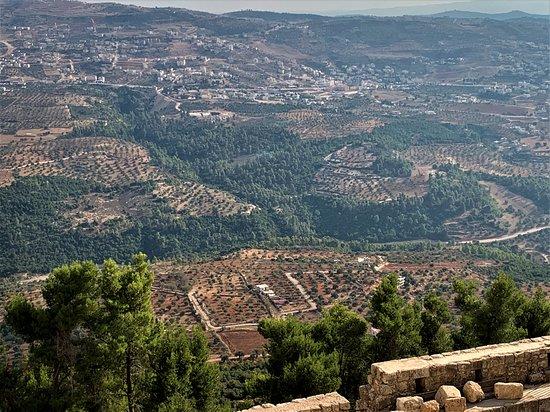 ป้อมอัจลุน: Looking down from the fort to the valley and country side.  Incredible views!  La panorama desdel castillo es impresionante - una vista por todos lados!