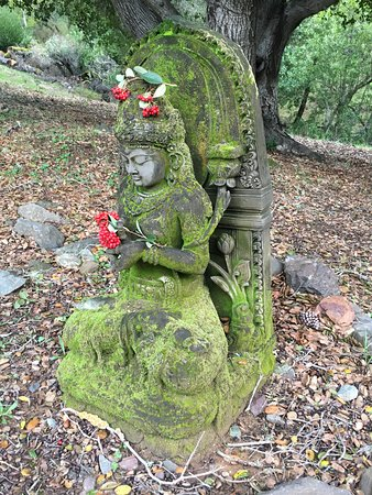 Woodacre, Californie: Love to walk around the grounds to see the natural beauty and every now and then you come across a Buddha statue or shrine.  l