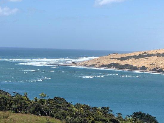 Mitimiti, ניו זילנד: Hokianga sand dunes