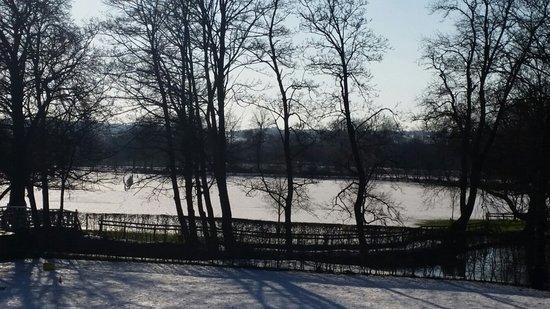 University of Oxford Botanic Garden: Snow on the ground