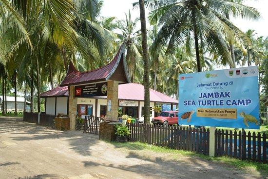 Jambak Sea Turtle Camp