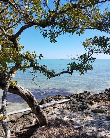 Lignumvitae Key Botanical State Park