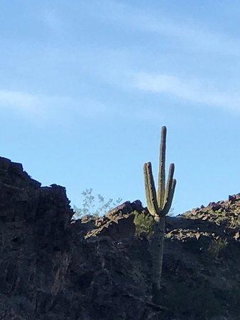 Wellton, AZ: Climbing Gila mountain