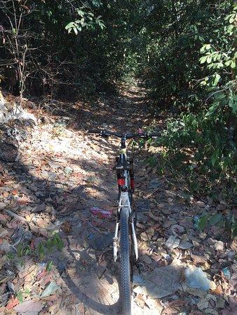 アンコールの遺跡のサイクリングのツアー、朝8時から午後14時までのコース、森の中に自転車に乗っって 森の中に遺跡の観光出来ます。森に中に車で入れません。自転車とバイクだけです。  http://anan-angkor-tour.com/tour_detail/pg388.html
