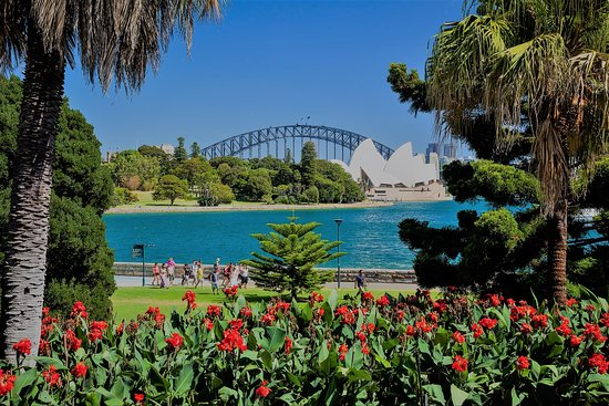 best view from reflects - Closest Train Station To Royal Botanic Gardens Sydney