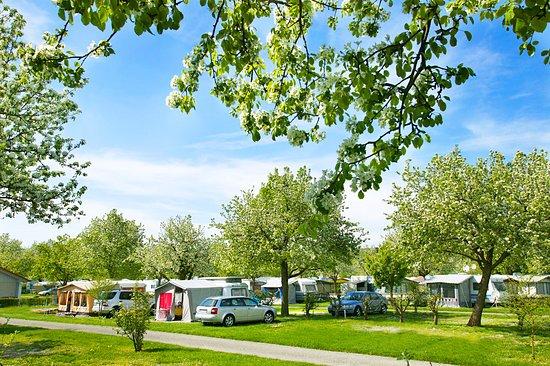 Camping Wirthshof Bewertungen Fotos Markdorf Tripadvisor