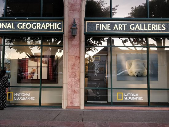 ‪National Geographic Fine Art Galleries‬
