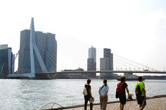 Walk Rotterdam - walking tours