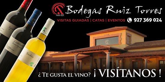 Cañamero, España: ¿Te gusta el Vino?