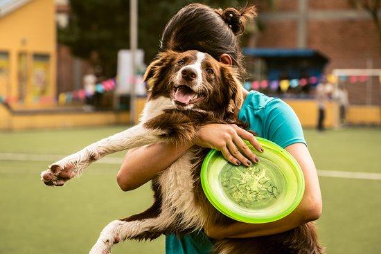 Para todos los amantes de los perros ya tenemos nuestro nuevo PetPark, ven y disfruta de un excelente momento al lado de tu peludito.
