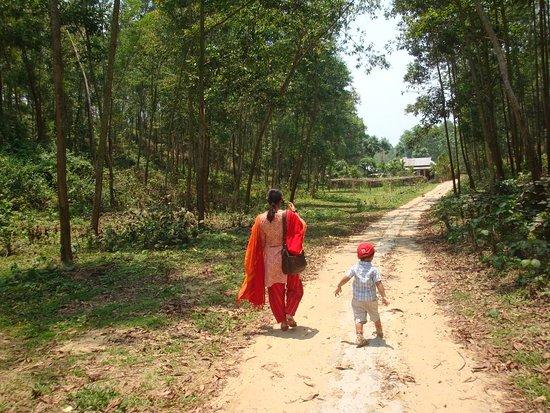 Jamalpur, بنجلاديش: Lauchapra, a village situated at Bangladesh-India border.