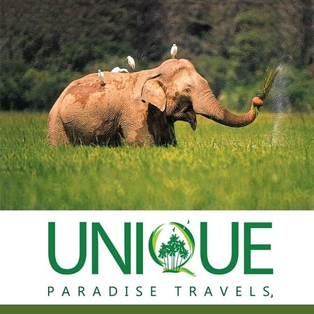 UNIQUE  PARADISE TRAVELS (PRIVATE) LIMITED
